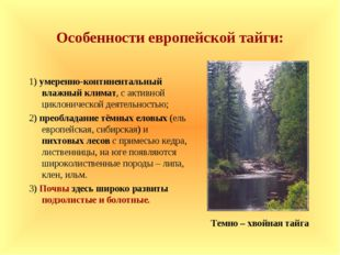 Особенности европейской тайги: 1) умеренно-континентальный влажный климат, с