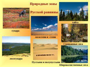 Природные зоны Русской равнины тундра лесотундра лесостепи и степи Пустыни и