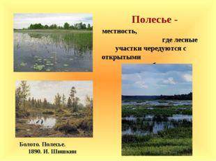 Полесье - Болото. Полесье. 1890. И. Шишкин местность, где лесные участки чере