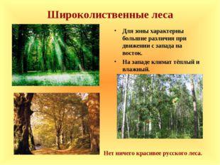Широколиственные леса Для зоны характерны большие различия при движении с зап