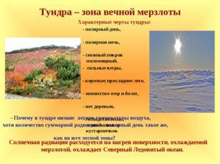 Тундра – зона вечной мерзлоты Характерные черты тундры: - полярный день, - по
