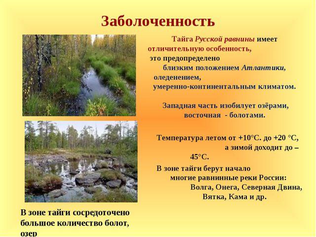 Заболоченность Температура летом от +10°С. до +20 °С, а зимой доходит до – 45...