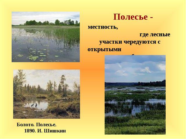 Полесье - Болото. Полесье. 1890. И. Шишкин местность, где лесные участки чере...