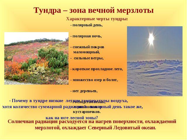 Тундра – зона вечной мерзлоты Характерные черты тундры: - полярный день, - по...