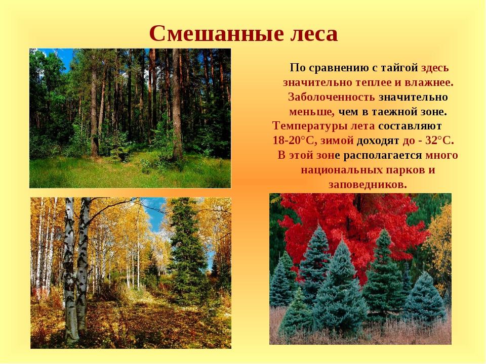 Смешанные леса По сравнению с тайгой здесь значительно теплее и влажнее. Забо...