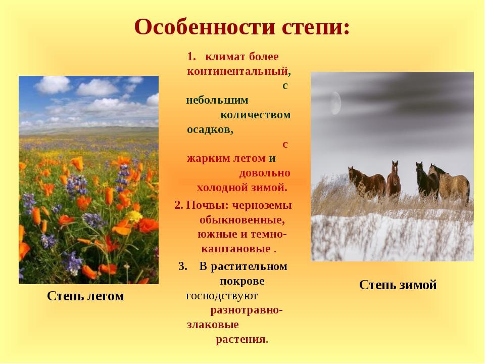 Особенности степи: климат более континентальный, с небольшим количеством осад...