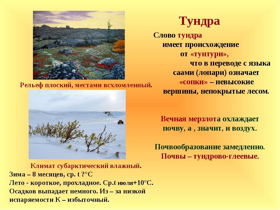 Тундра Слово тундра имеет происхождение от «тунтури», что в переводе с языка...