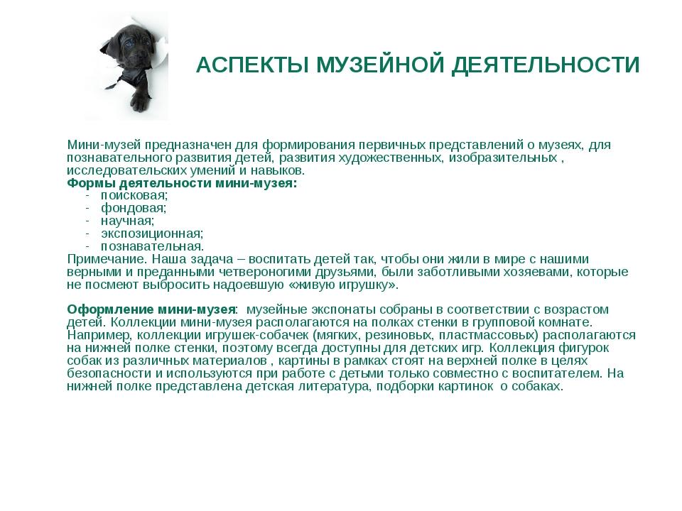 АСПЕКТЫ МУЗЕЙНОЙ ДЕЯТЕЛЬНОСТИ  Мини-музей предназначен для формирования перв...