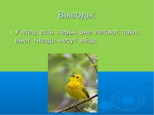 Выводы: У птиц есть перья, они летают, поют, вьют гнезда, несут яйца.