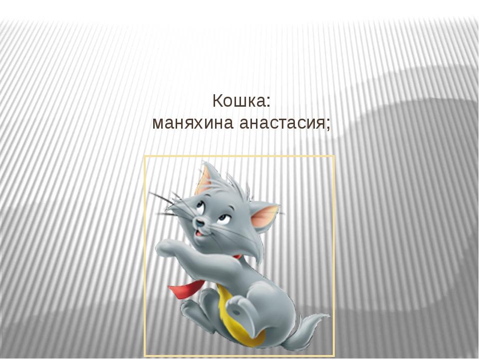 Кошка: маняхина анастасия;