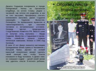Данила Садыкова похоронили в городе Набережные Челны на Орловском кладбище, н