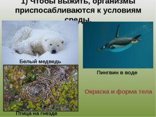1) Чтобы выжить, организмы приспосабливаются к условиям среды. Окраска и форм