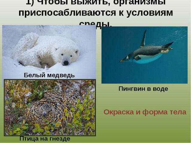 1) Чтобы выжить, организмы приспосабливаются к условиям среды. Окраска и форм...