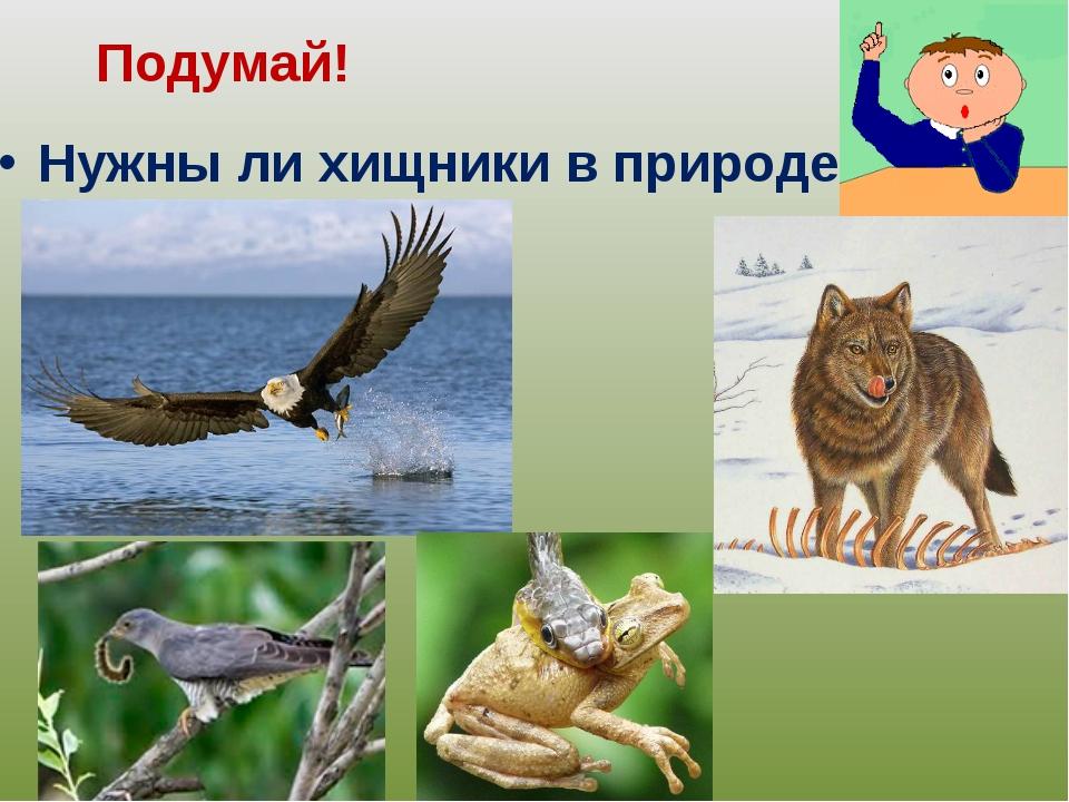 Нужны ли хищники в природе? Подумай!