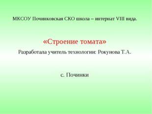 МКСОУ Починковская СКО школа – интернат VIII вида. «Строение томата» Разработ