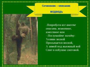 Сочинение – описание МЕДВЕДЬ - Попробуем все вместе описать животное, известн