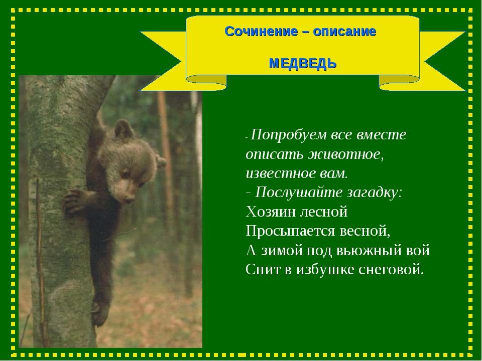 Сочинение – описание МЕДВЕДЬ - Попробуем все вместе описать животное, известн...