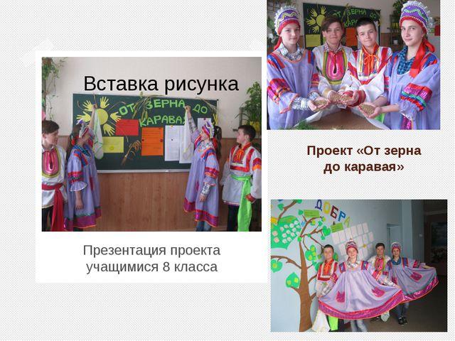 Проект «От зерна до каравая» Презентация проекта учащимися 8 класса