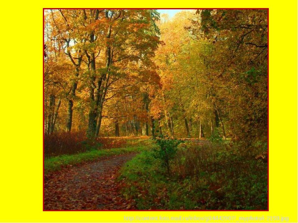 http://content.foto.mail.ru/inbox/g34442007/_myphoto/i-2159.jpg