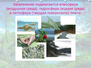 Загрязнению подвергаются атмосфера (воздушная среда), гидросфера (водная сред