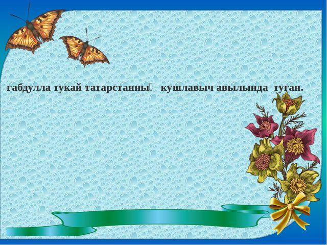 габдулла тукай татарстанның кушлавыч авылында туган.