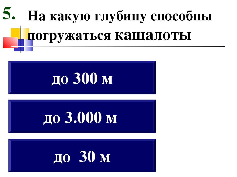 На какую глубину способны погружаться кашалоты до 30 м до 3.000 м до 300 м 5.