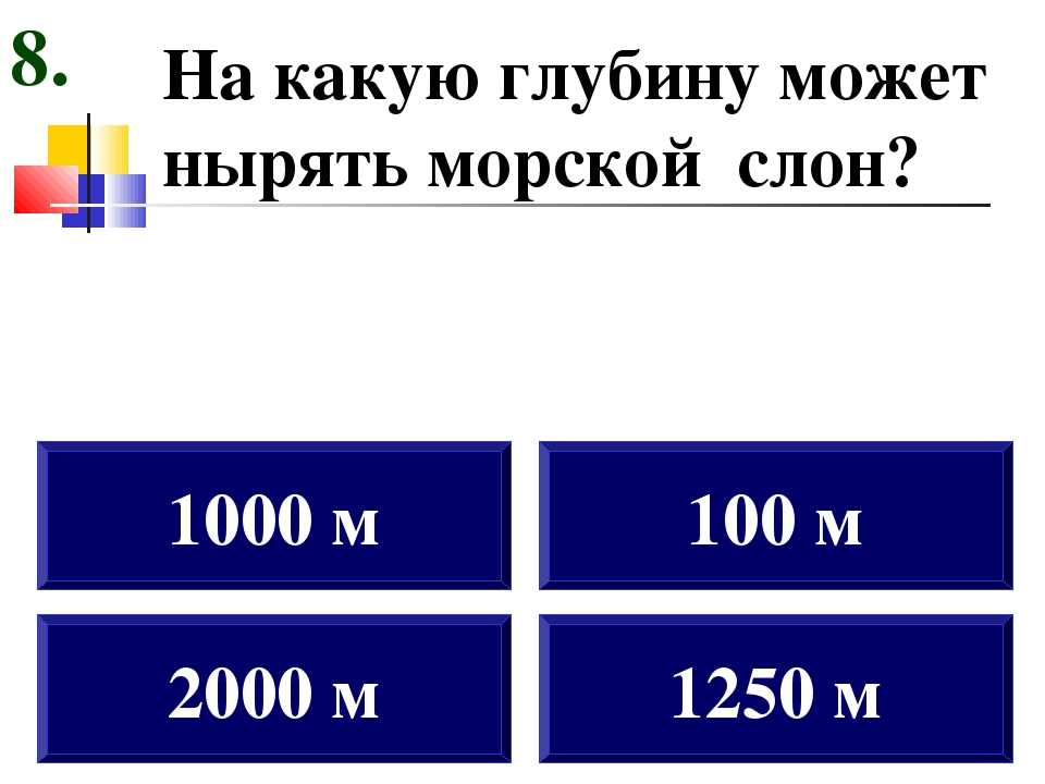 На какую глубину может нырять морской слон? 2000 м 1000 м 100 м 1250 м 8.