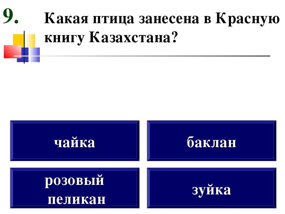 Какая птица занесена в Красную книгу Казахстана? розовый пеликан чайка баклан...