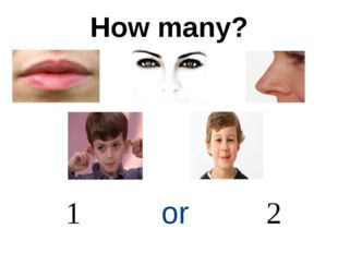 How many? 1 or 2