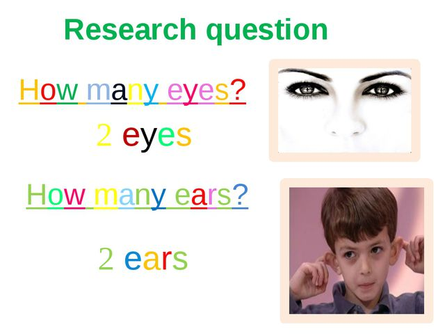 How many eyes? How many ears? 2 eyes 2 ears Research question