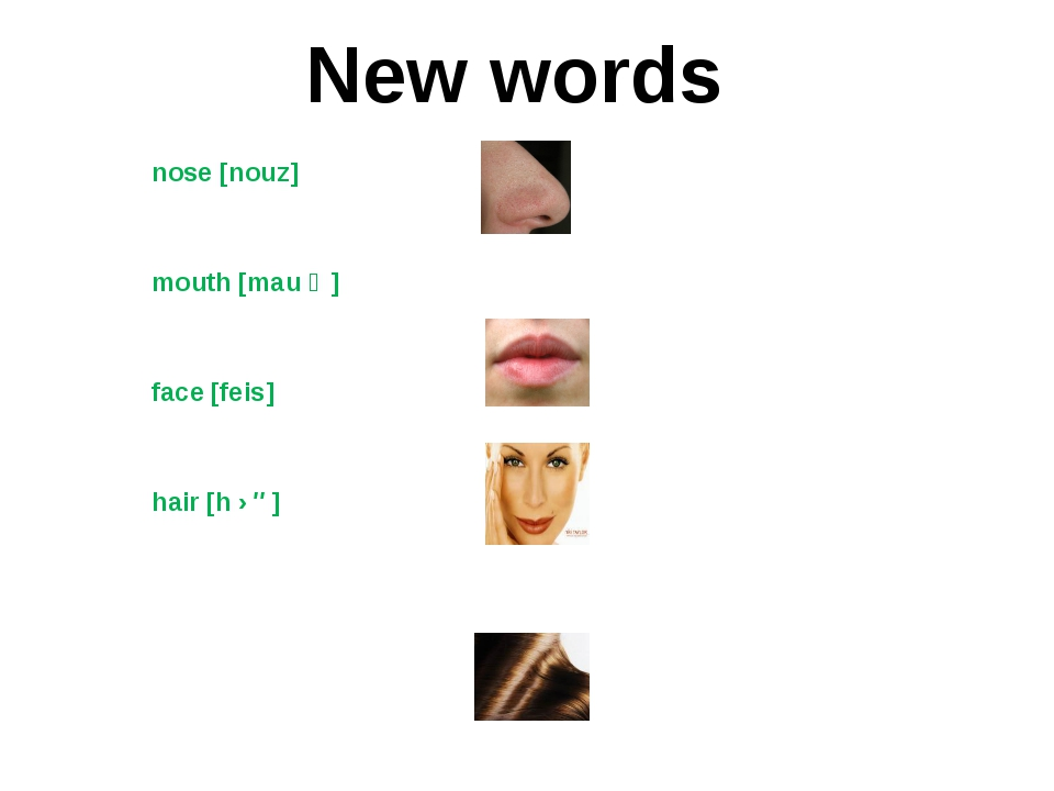 nose [nouz] mouth [mau ϴ] face [feis] hair [h ɛə] New words