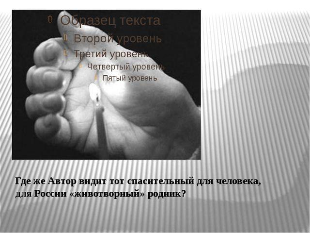 Где же Автор видит тот спасительный для человека, для России «животворный» ро...