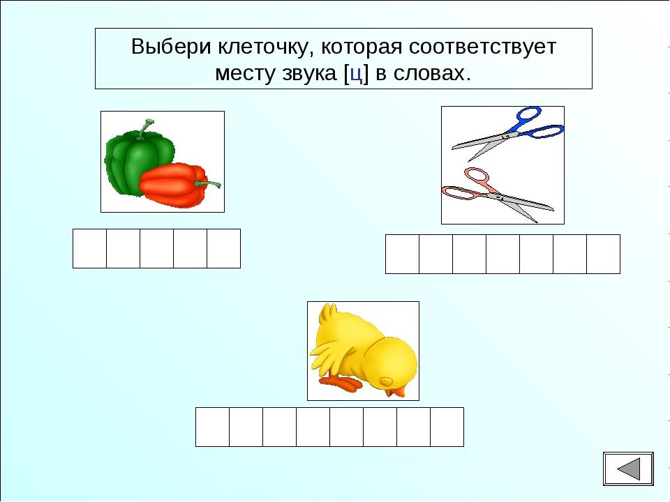Выбери клеточку, которая соответствует месту звука [ц] в словах.