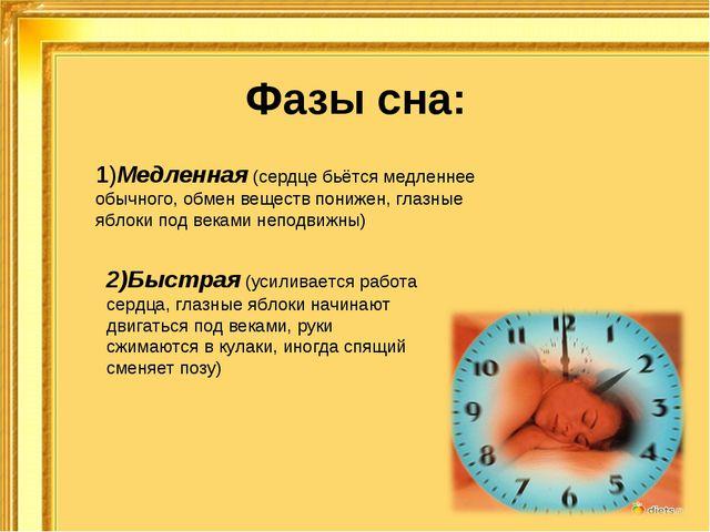 Фазы сна: 1)Медленная (сердце бьётся медленнее обычного, обмен веществ пониже...