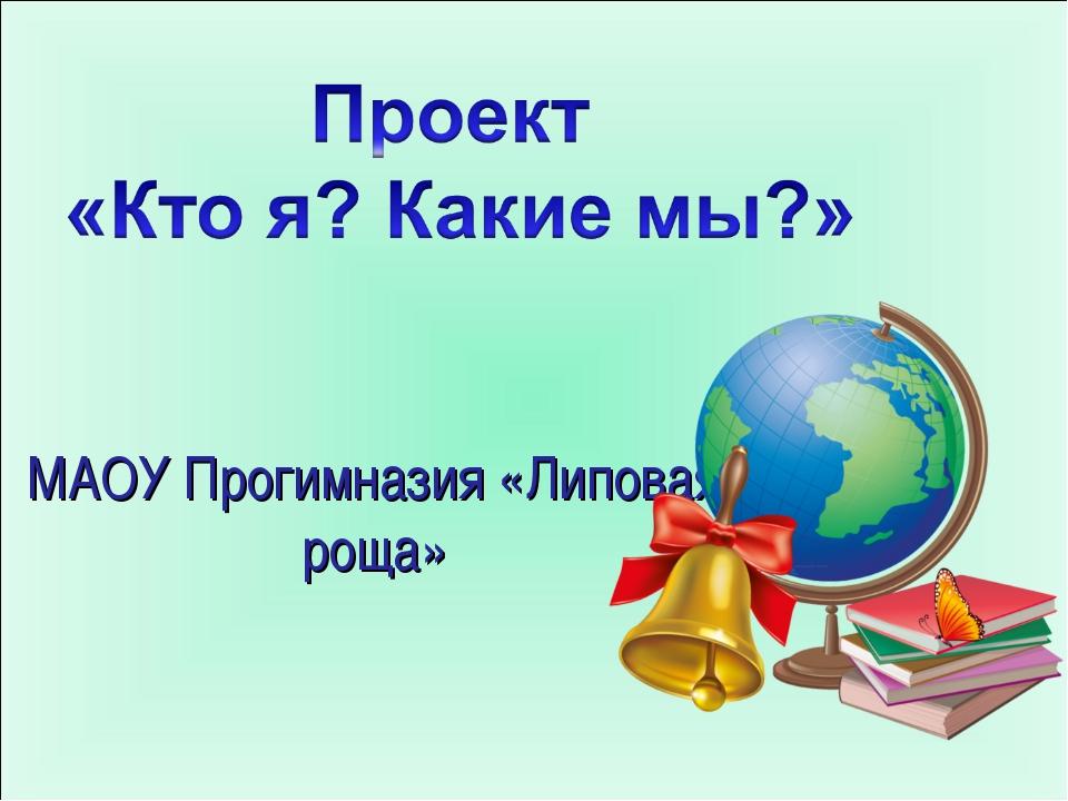 МАОУ Прогимназия «Липовая роща»