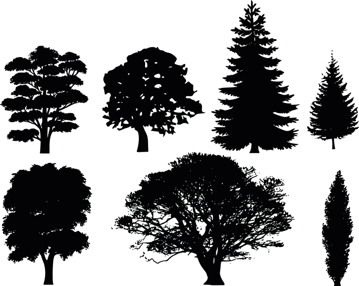 D:\jkz\разработки\примеры\free-banana-pine-tree-clipart-free-clipart-of-7-tree-silhouettes-pictures.jpg
