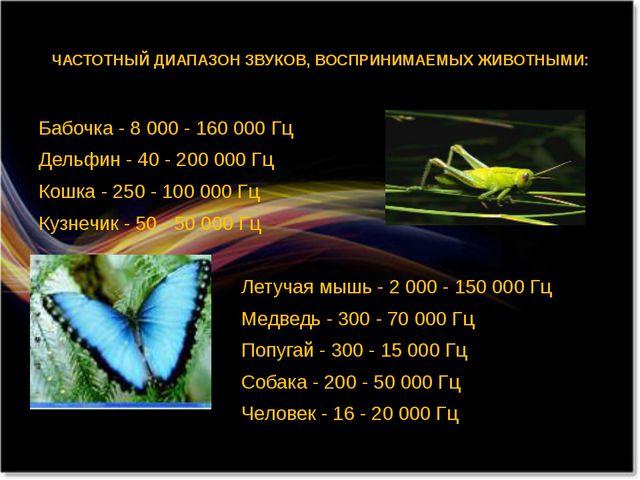ЧАСТОТНЫЙ ДИАПАЗОН ЗВУКОВ, ВОСПРИНИМАЕМЫХ ЖИВОТНЫМИ: Бабочка - 8 000 - 160 0...