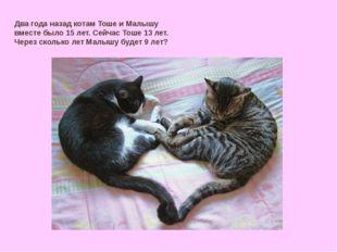 Два года назад котам Тоше и Малышу вместе было 15 лет. Сейчас Тоше 13 лет. Че