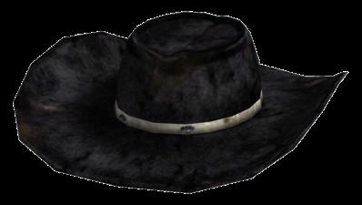 http://images3.wikia.nocookie.net/__cb20110405201407/fallout/images/f/fa/Desperado_cowboy_hat.png