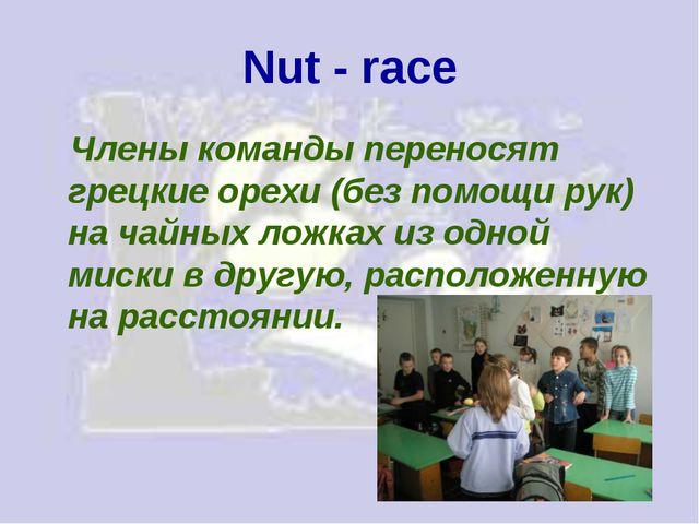 Nut - race Члены команды переносят грецкие орехи (без помощи рук) на чайных л...