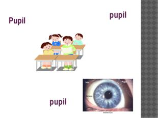 Pupil Ben is the best pupil in our class. When studying the eye, our teacher