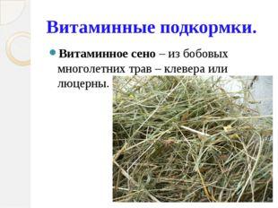 Витаминные подкормки. Витаминное сено – из бобовых многолетних трав – клевера