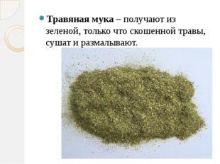 Травяная мука – получают из зеленой, только что скошенной травы, сушат и раз