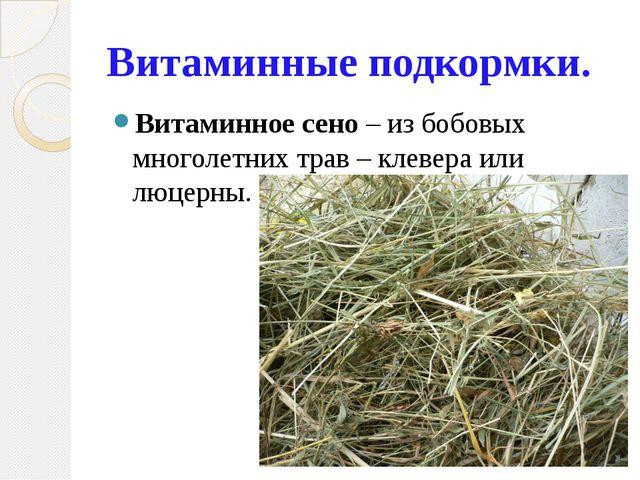 Витаминные подкормки. Витаминное сено – из бобовых многолетних трав – клевера...