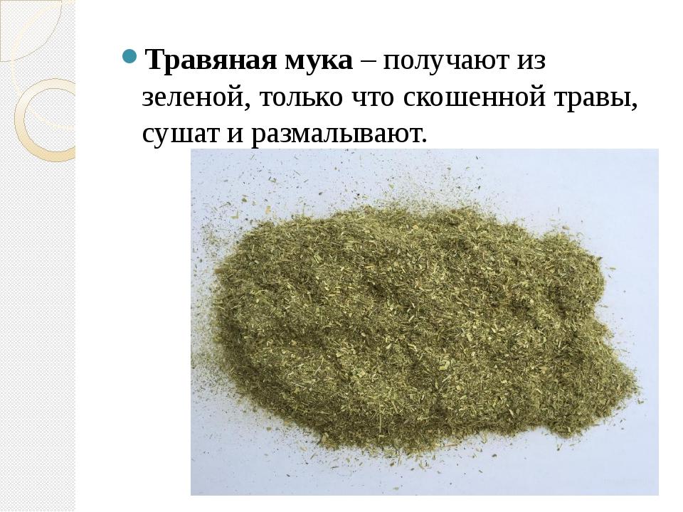 Травяная мука – получают из зеленой, только что скошенной травы, сушат и раз...