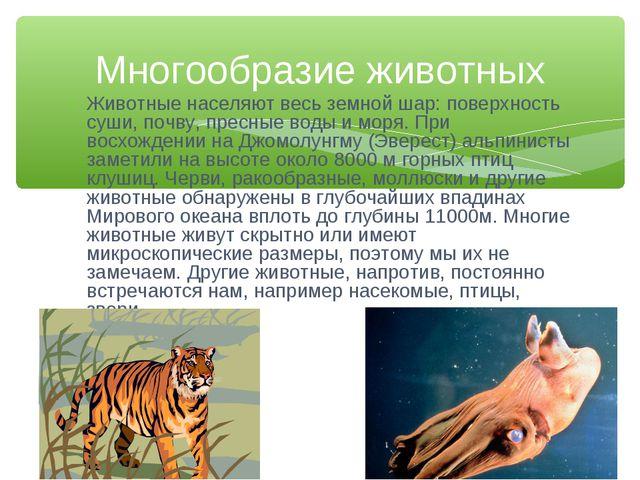 Животные населяют весь земной шар: поверхность суши, почву, пресные воды и мо...