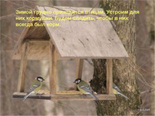 Зимой трудно приходится птицам. Устроим для них кормушки. Будем следить, чтоб