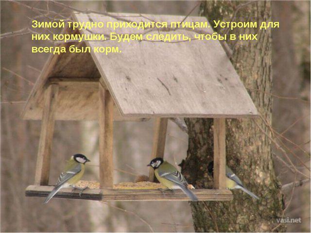 Зимой трудно приходится птицам. Устроим для них кормушки. Будем следить, чтоб...
