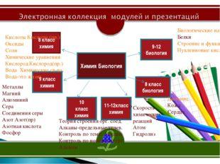 2 место Химия Биология 8 класс химия 9 класс химия 10 класс химия 11-12класс