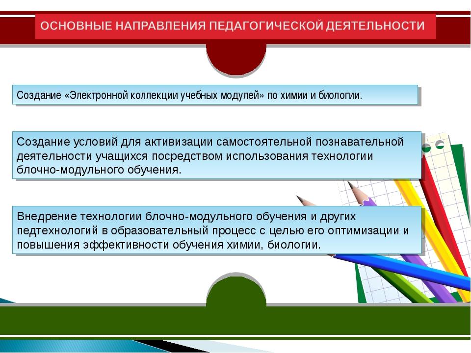 ОСНОВНЫЕ НАПРАВЛЕНИЯ ПЕДАГОГИЧЕСКОЙ ДЕЯТЕЛЬНОСТИ Создание «Электронной коллек...